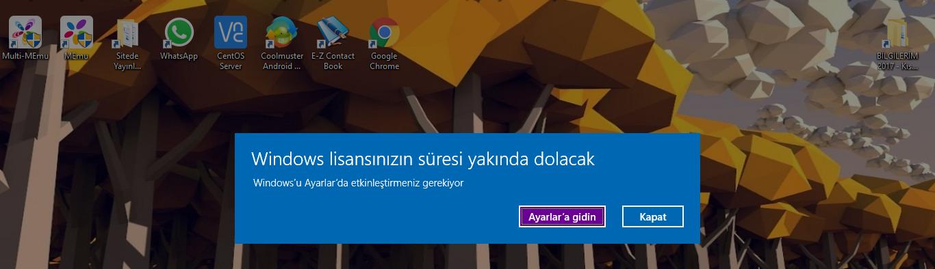Windows lisans yonetim hizmeti