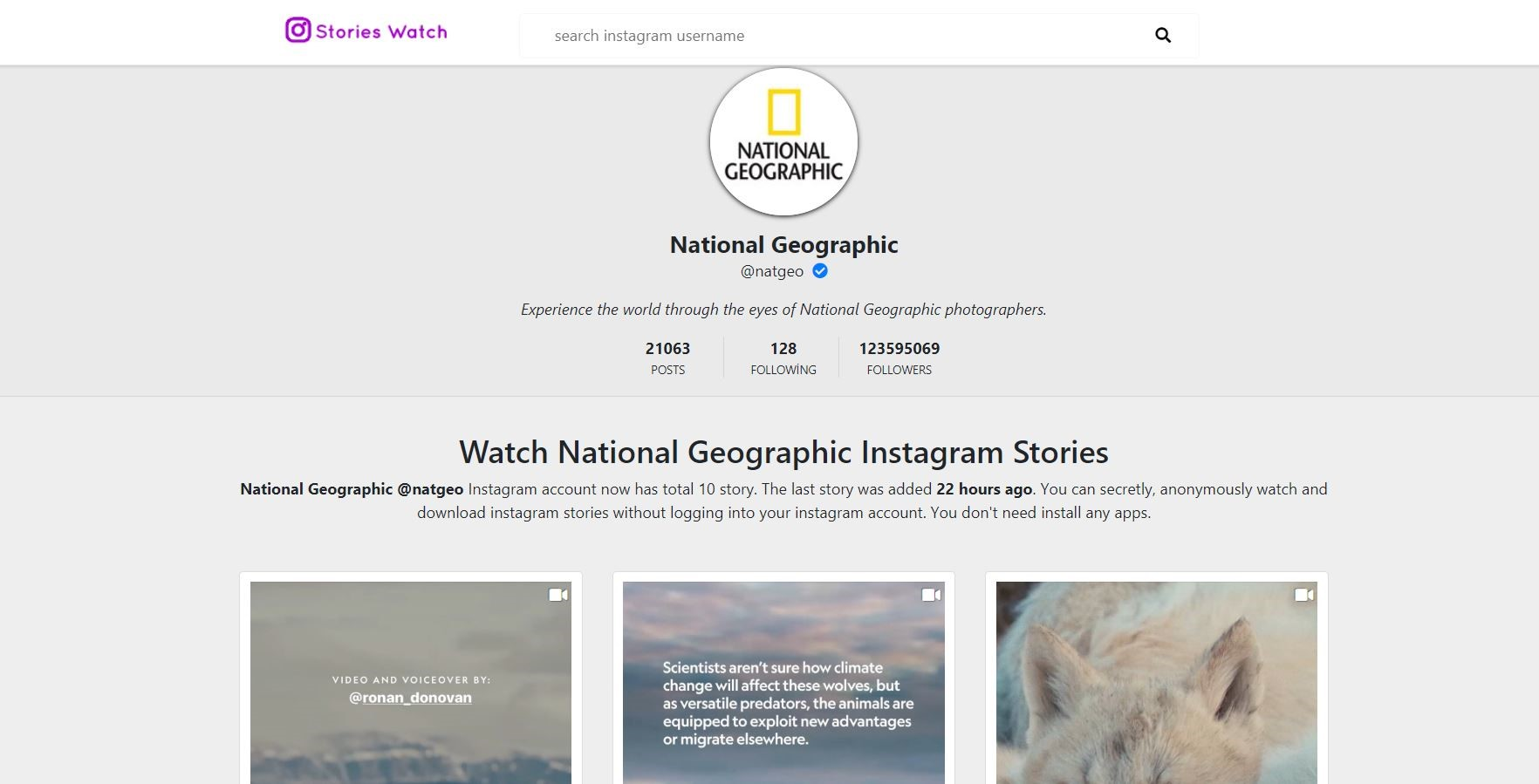 Instagram Story İndirme Sitesi